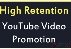 5117High-Quality YouTube Video Promotion and Marketing